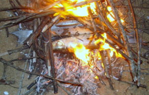 Fresh-fish-being-burnt-with-twigs-at-the-Brahmagiri-beach